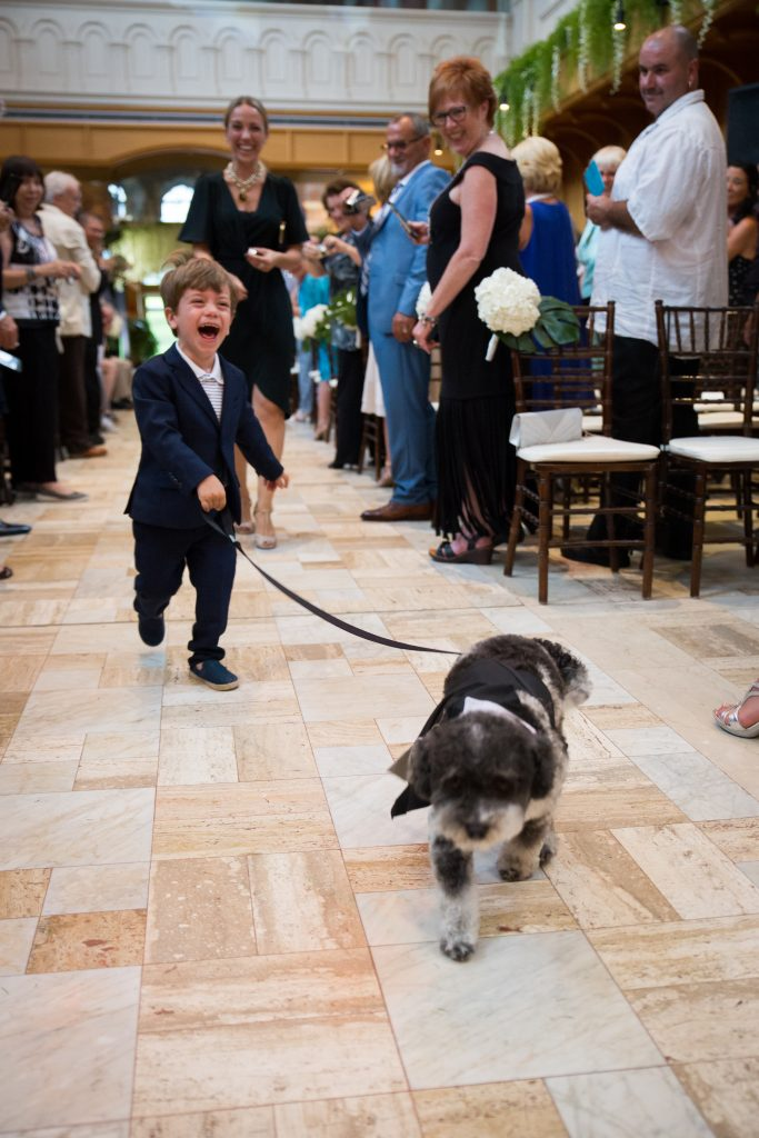 Dog walking down the aisle with ring boy